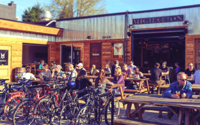 We're Running at Migration Brewing, and You Should Join us! Here's Why